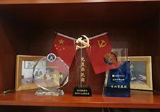 杨律师荣誉奖杯照